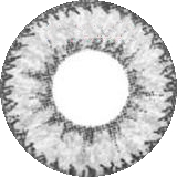 Geo Nudy Gray Circle Color Lens - CH625 Gray